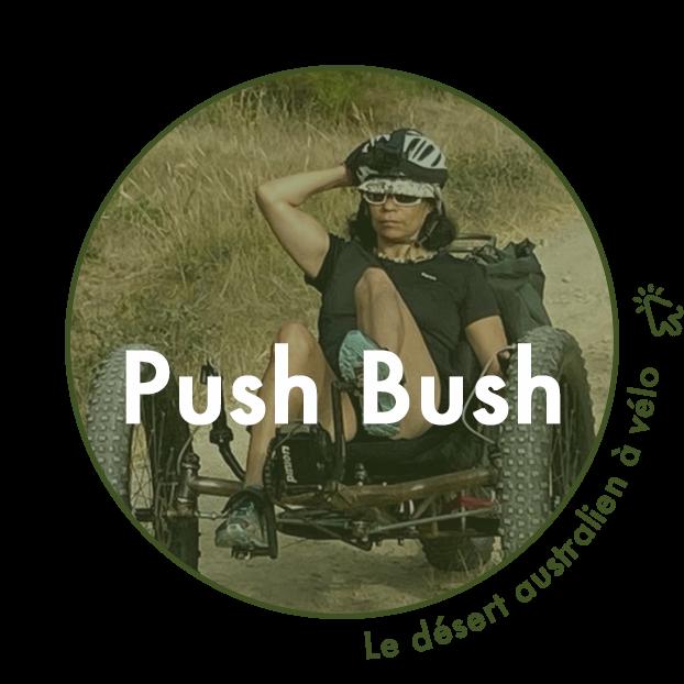 Push Bush - Olivia Chaloin
